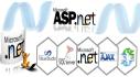 do any complex asp dot net mvc application