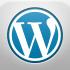 setup a wordpress website