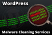 clean your hacked WordPress blog, remove malicious code, clean infections
