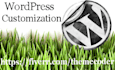 install, customize, create websites with wordpress