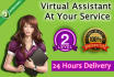 be your Virtual Assistant for data entry and deliver in 24 hours