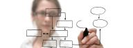 provide IT consultancy service