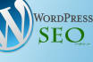 professionally install wordpress and seo plugins