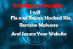 remove Malware,Virus or Malicious code from Wordpress