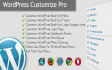 do any WordPress work, fix, problem and customization