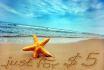 place your amazing LoGo on sand