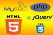 do custom html,css,php,mysql work