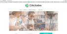 build a custom wordpress site