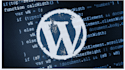 transfer, install, customize WordPress website