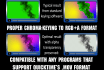 correctly chroma key and pre key the result into a PNG codec