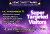 send 45 000 DIRECT genuine site traffic visitors