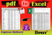 convert PDF to Excel and Data Entry in 24 hours