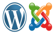 make a wordpress website for you