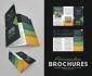 design an amazing Brochure