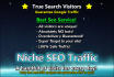 do the best in line SEO array for site or blog and Guarantee Google Traffic