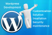 customize wordpress your website and solve issue