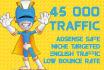 drive 45000 AdSense Safe Relevant Traffic Visitors