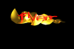 write company name in 3D dimension in my own style