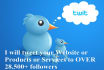 tweet your Website or Products or Services to OVER 28,500 followers
