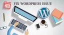 fix errors and professionally customize wordpress themes