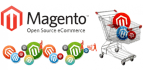 fix bugs, Install theme, anything in magento