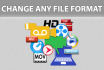 convert your file to any format you need