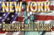 provide New York Businesses Database Email List Full Contact Details