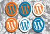installed WordPress for you with WordPress plugin