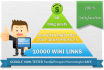 make link pyramid 50 blog Posts, 400 PR3 to PR9 profiles links and 10,000 wikiz