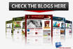 give a Wordpress theme Blog Niche for any business, BONUS 20 post articles