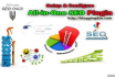 install All in One SEO Pack and Do On Page S E O