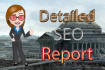 give you very detailed SEO report to optimize and rank your website in google
