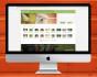 design amazing   Website template for 10 dollar