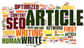 create a 600 words seo optimized article or blogpost