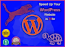 increase your WORDPRESS website loading speed in 24 hours