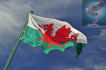 translate from English to Welsh or into text or voiceover