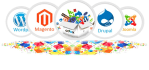 fix  PHP,Mysql,Html5,Css3,Jquery ,Seo,Wordpres,Magento issue
