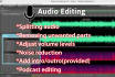 edit your audio professionally and deliver within 24 hours