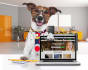 make business dog holding laptop with your logo or  website