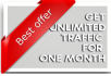 send Unlimited REAL Traffic To Your Web Site For One Month
