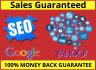do sales Guaranteed SEO campaign to website