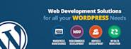 make website in WordPress and fix issue related WordPress
