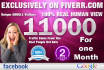 drive 11000 Real google and Facebook Traffic to Your Website