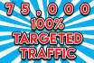 pull real USA Targeted,Traffic,Website visitors for 45 days