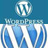 customize a Word Press Blog and Website for you