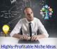 give 1 highly profitable Niche idea series for your business