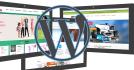 install or setup Wordpress site