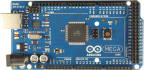 do your Arduino project