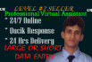 complete your excel Data Entry before 24 hours