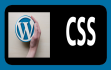 solve your wordpress css issue
